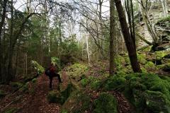Wandertour Felsenweg 1