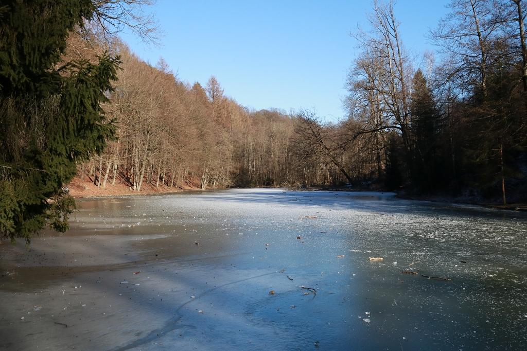 Bensberger Schlosswegs (Streizug Nummer 13) - Milchborntalweiher