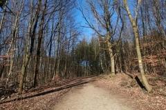 Bensberger Schlosswegs (Streizug Nummer 13)