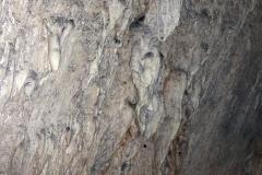 Tropfsteinhöhle Srednja Bijambarska