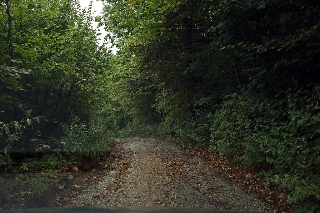 Straße im Sutjeska-Nationalpark
