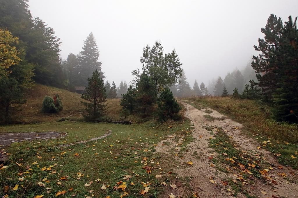 Nebelverhangener Sutjeska-Nationalpark