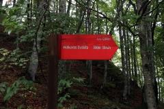 Vidikovac Beškita im Sutjeska-Nationalpark