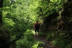Wanderung durch die Drachenschlucht, Landgrafenschlucht und zur Wartburg