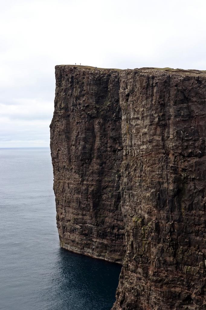 Kliff Trælanípa