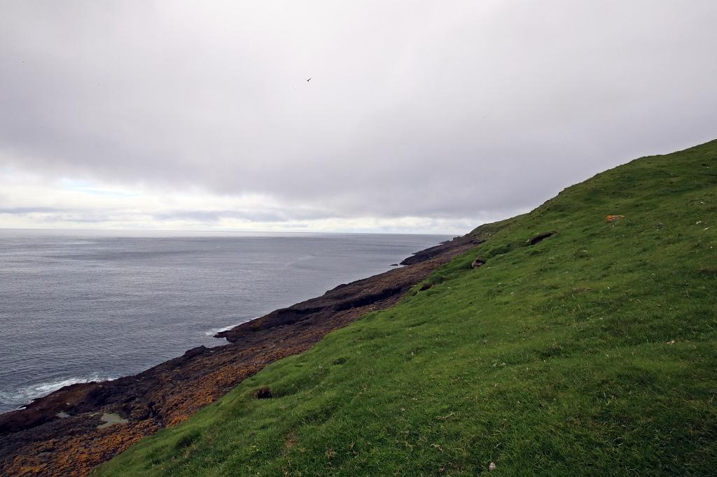 Auf dem Holm Mykineshólmur, Färöer