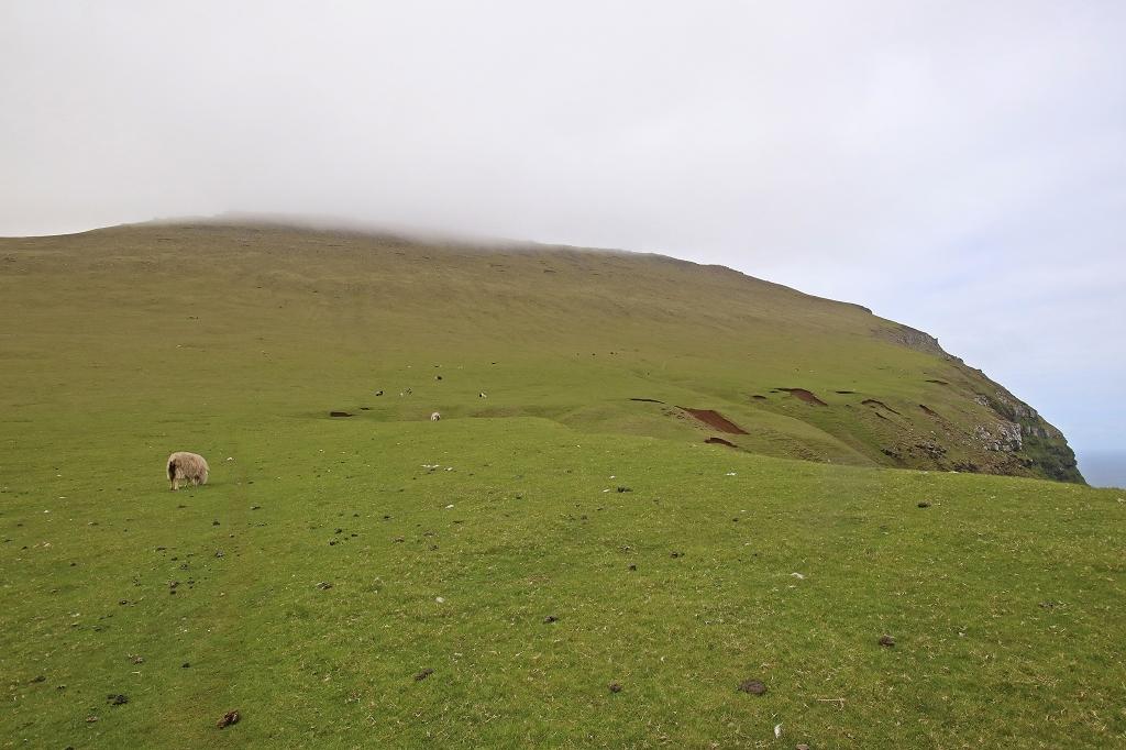 Abstieg durch wegloses Gelände am Osthang des Fjallið