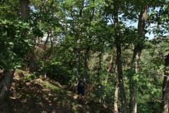 Abstieg vom Grat ins Tal