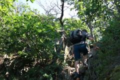 Gratwanderung über die Engelsley in Altenahr
