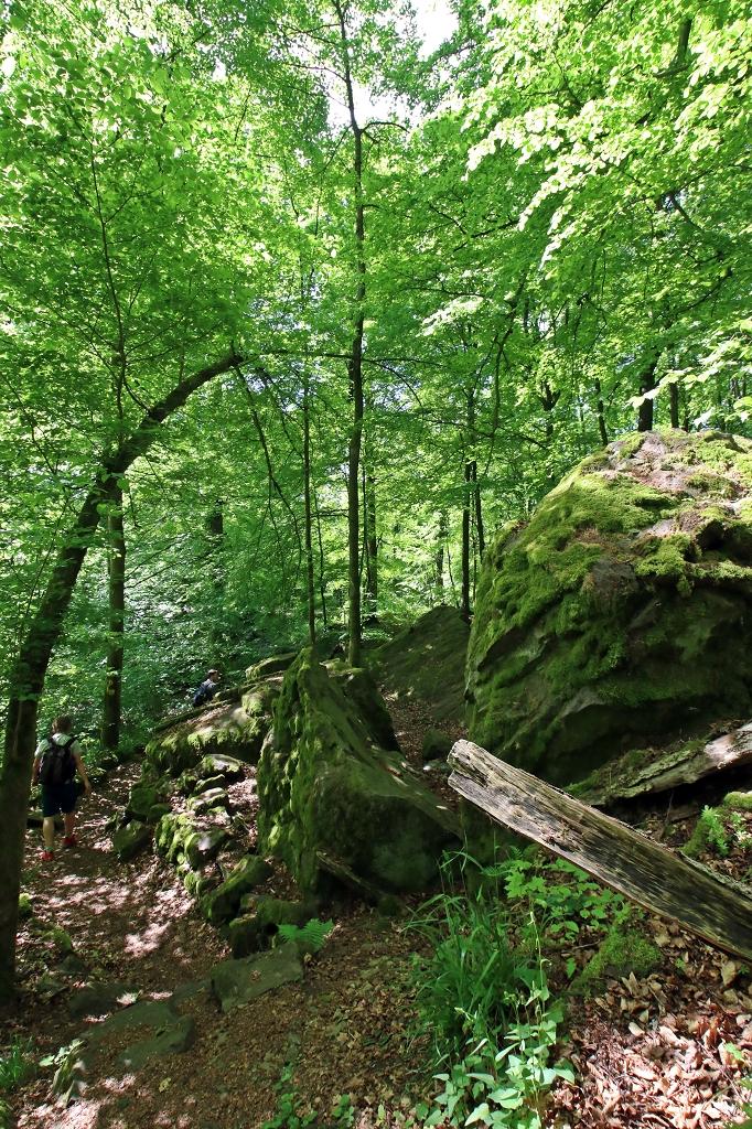 Premiumwanderweg Hoher Meißner - Seesteine