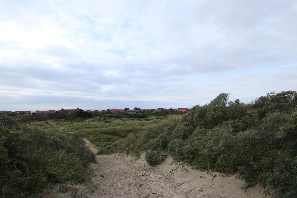 Dünenlandschaft auf Juist