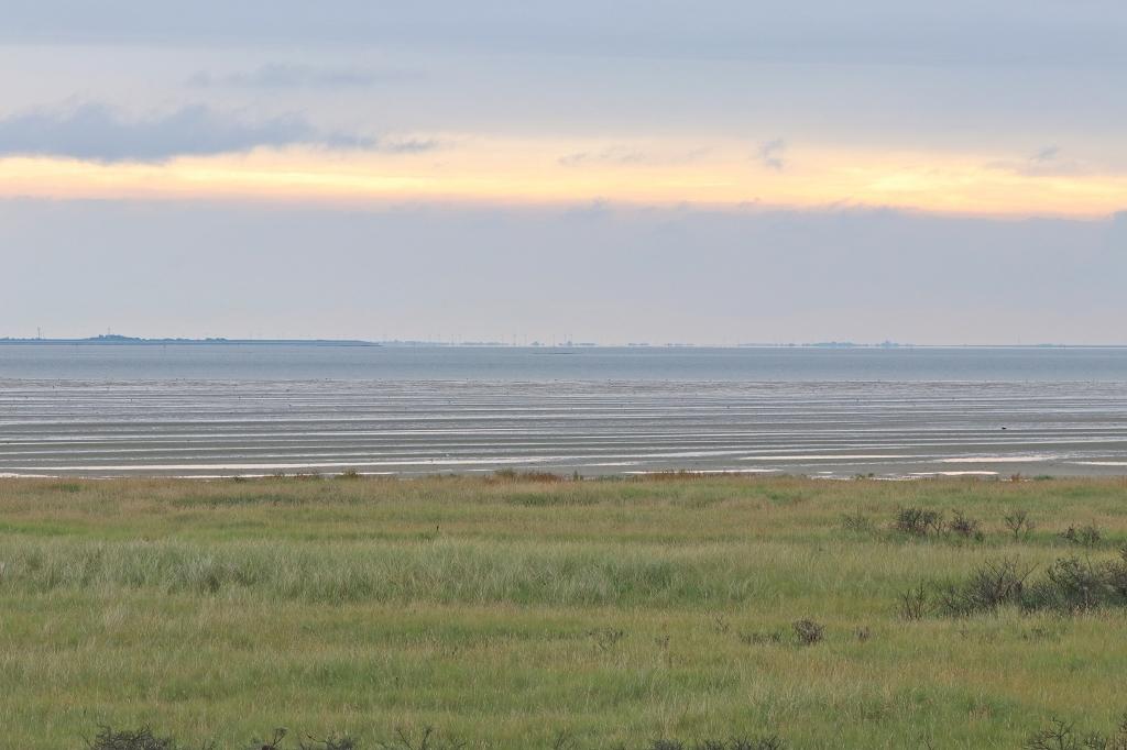 Blick vom Kalfamer am Ostende Juists