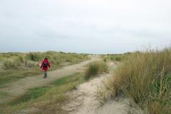 Durch die Dünen zum Oststrand von Juist