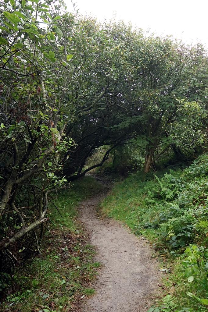 Fahrradtour in den Westen der Insel Juist - Rundweg um den Hammersee