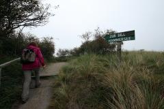 Fahrradtour in den Westen der Insel Juist - Weg zum Hammersee