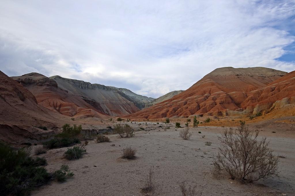 Farbrausch im Altyn-Emel-Nationalpark