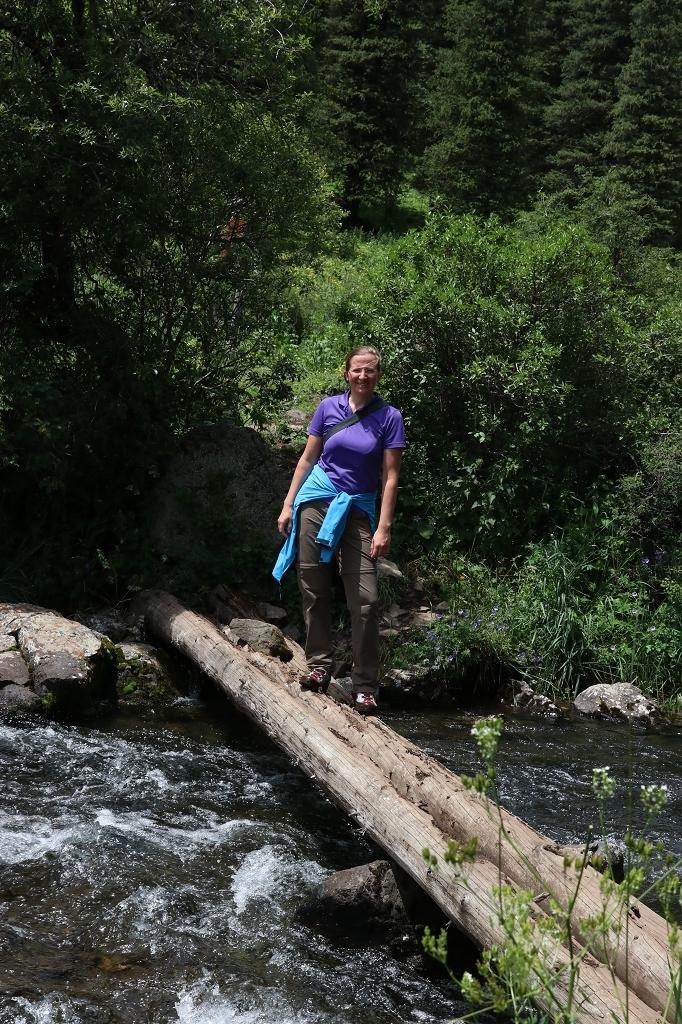 Noch eine Brücke aus Baumstämmen trennt uns vom Mittleren Kolsaisee