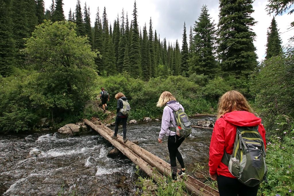 Erneut ist die Baumstammbrücke zu überqueren