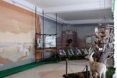 Przhewalsky Memorial Museum in Karakol
