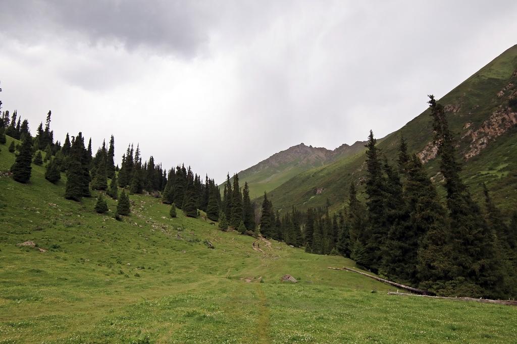 Immer weiter gehts hinein ins Tal