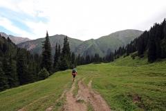 Die Baumgrenze im Altyn-Araschan-Tal auf 3.000 Meter Höhe ist erreicht