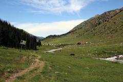 Kurz vor dem Altyn-Arashan Travel Guesthouse