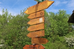 Wanderung Weltnaturerbepfad Nationalpark Hainich