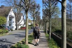 Natursteig Sieg Etappe 2 - Von Hennef nach Blanken