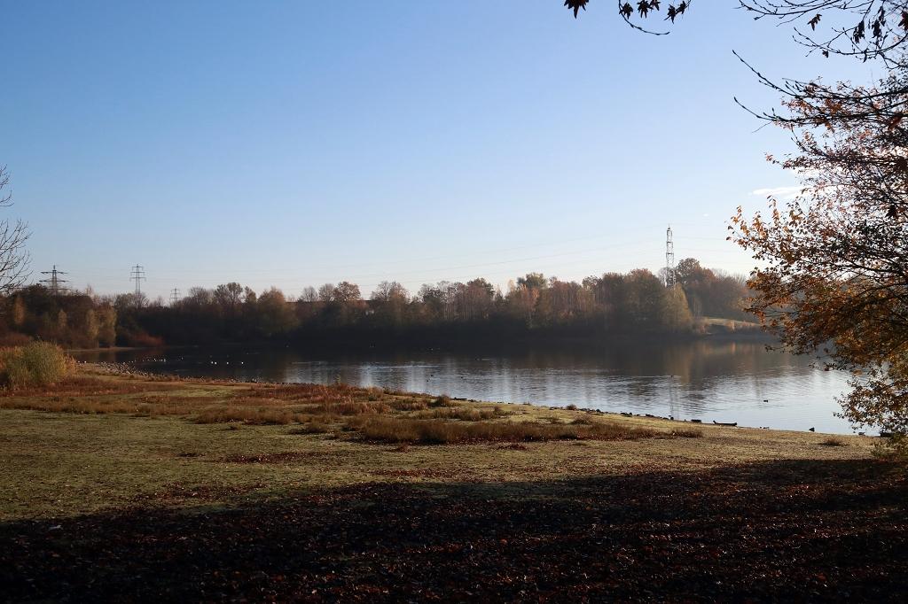 Neanderlandsteig Etappe 9 - Von Ratingen nach Ratingen-Homberg - Grüner See im Erholungspark Volkardey