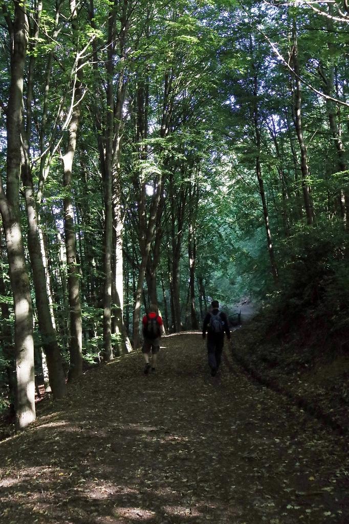 neanderlandSTEIG Etappe 6 - Velbert-Mitte nach Essen-Kettwig