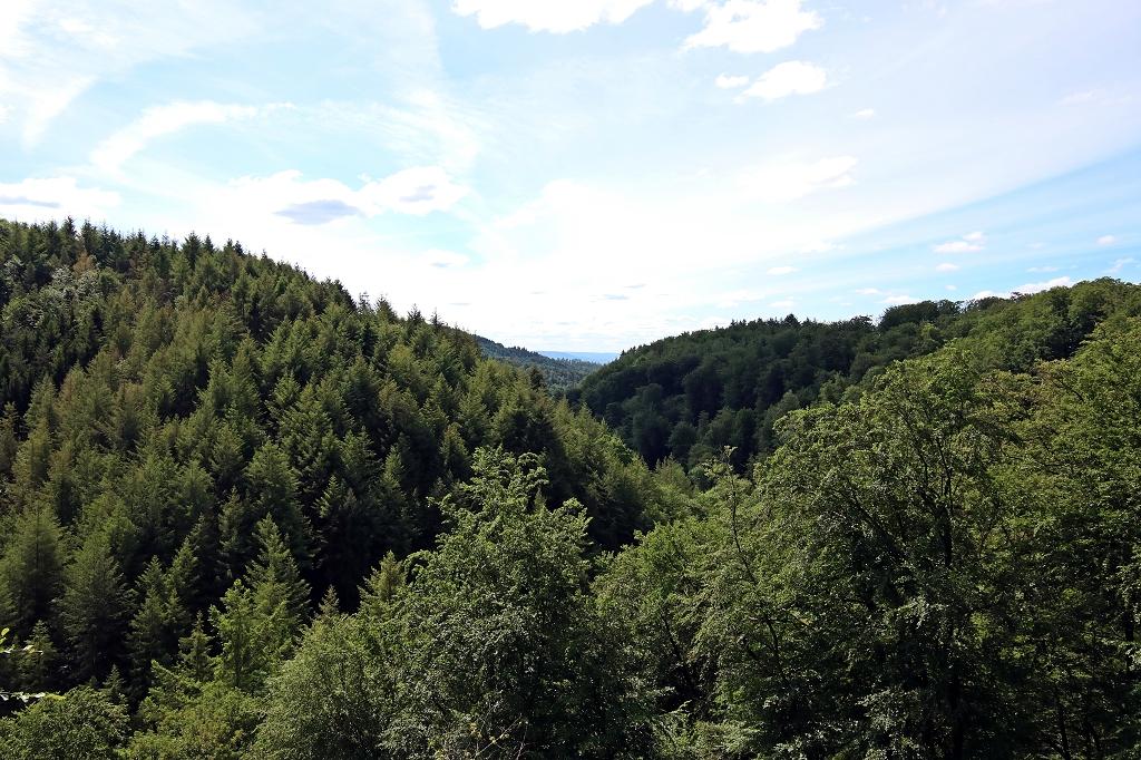Rheinsteig Etappe 8 - Von Rengsdorf nach Sayn