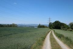 Rheinsteig Etappe 9: Von Sayn nach Vallendar - Auf dem Galgenberg