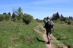 Wanderung zum Gangolfsberg und zu den Basaltsäulen in der Rhön