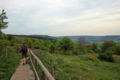 Blick auf das Rote Moor