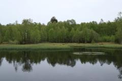 Moorsee auf der Extratour Rotes Moor in der Rhön