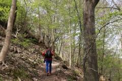 Auf bergigen Pfaden an der Lenne