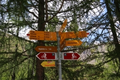 Weg zur Hängebrücke Furi