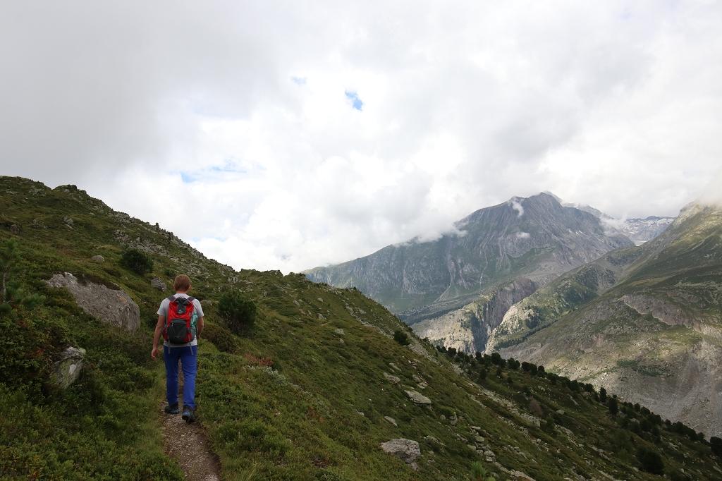Auf dem Oberen Aletschweg zum Aletschwald