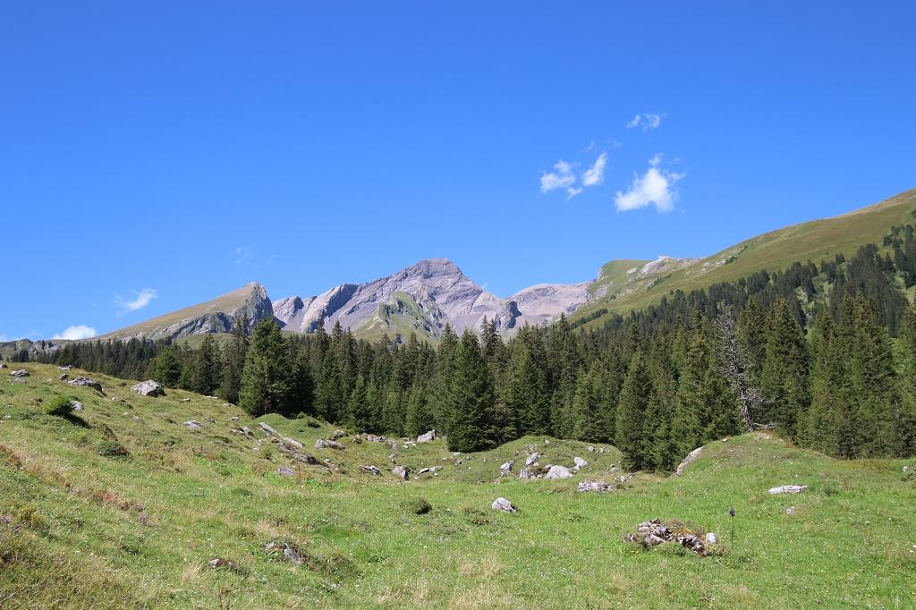 Wetterhorntrek: Von der Glecksteinhütte zur Schwarzwaldalp - Abstieg zur Schwarzwaldalp