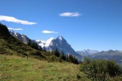 Wetterhorntrek: Von der Glecksteinhütte zur Schwarzwaldalp - Eiger again