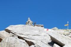 Wanderung vom Grimselpass zum Sidelhorn - Alpenbraunelle am Sidelhorn