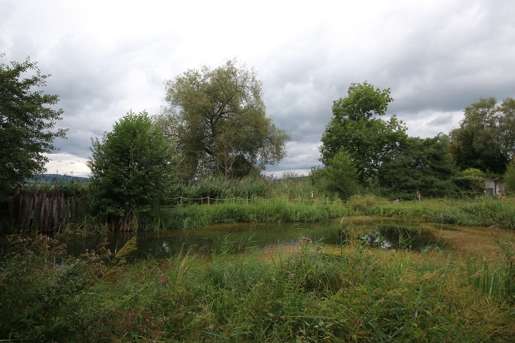 Vogelwarte Sempach - Garten