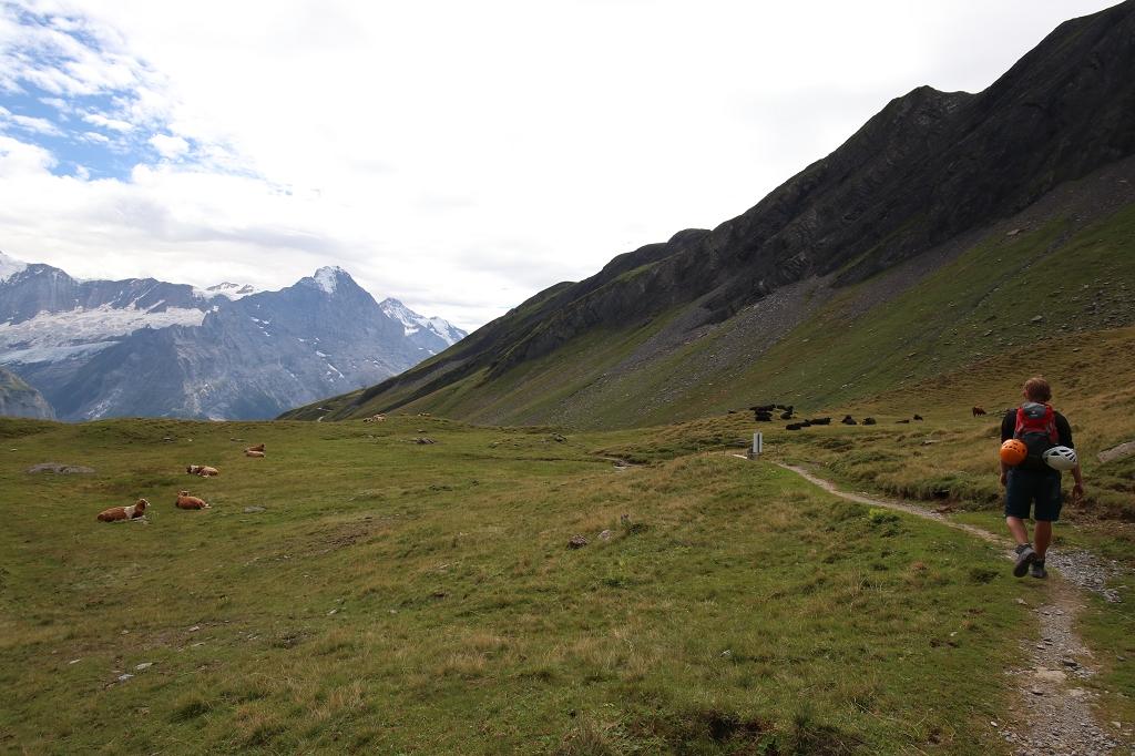Rückweg zur Bergstation First