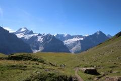 Durch den Distelboden zum Einstieg des Schwarzhorn-Klettersteigs