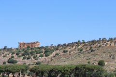 Blick auf die Tempel des Valle dei Templi