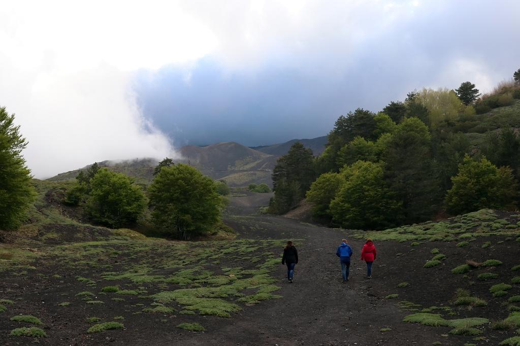 Alte Lavafelder in der Region Etna Nord