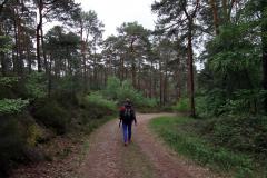 Von der Klosterruine Limburg zur Schlossruine Hardenburg - Kleines Eppental